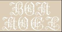 Noël Inspiration Sajou 326 - 154 x 78 points (37 points par lettre en hauteur)